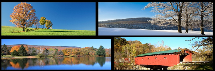 Vacation Rentals in Manchester Vermont Banner